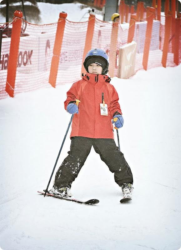 Skiier-(1)