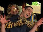 Tiger Attack.jpg