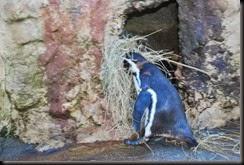 nesting material 3