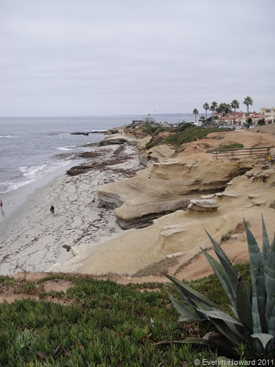 La Jolla © Evelyn Howard 2011