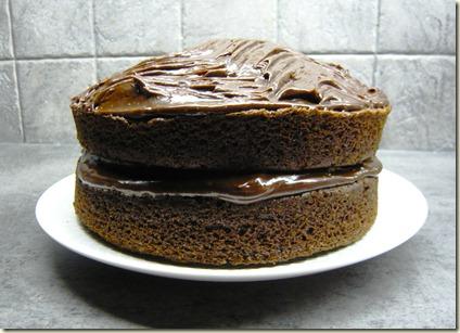 fudge cake1a