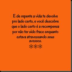1456497_241406092685984_1297602125_n