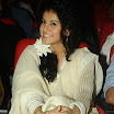 Tapsee @ A Audio Function - Cute Photo Gallery 2012