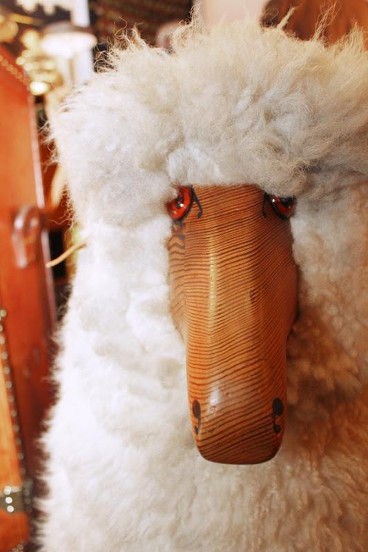 mouton-tanguy
