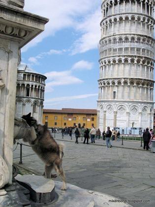 Bondi & the leaning tower #2