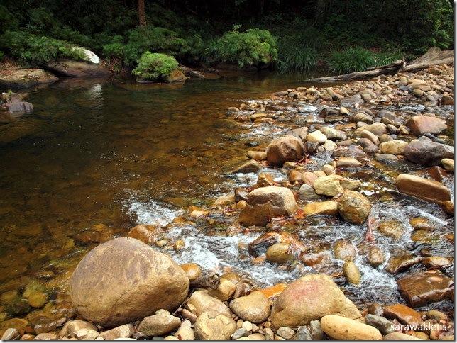 jungle_river_sarawak