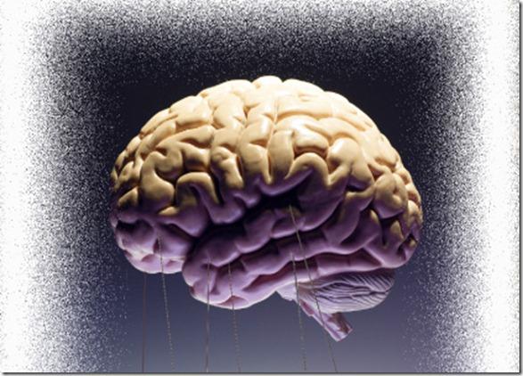 cerebro a