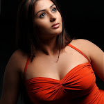 Namitha Hot (17).jpg