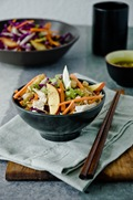 AsianInspiredChickenCabbageSalad_0013-2