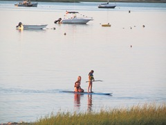 cape cod paddle boarding1