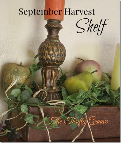sept. harvest shelf @ TTG