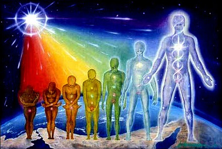 Os oito circuitos da Consciência