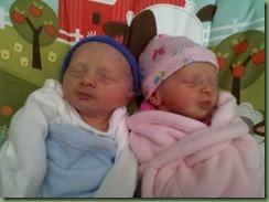 babies 035