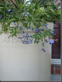 Planting Flowers 029