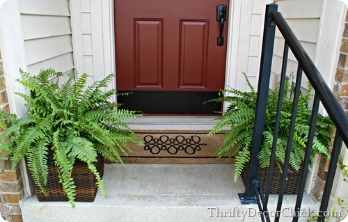 ferns on front porch