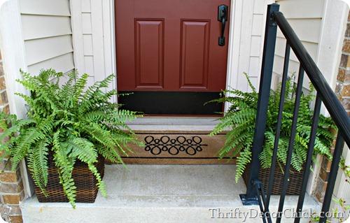 ferns on front porch