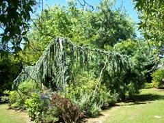 2011.07.01-001 jardin des lutins