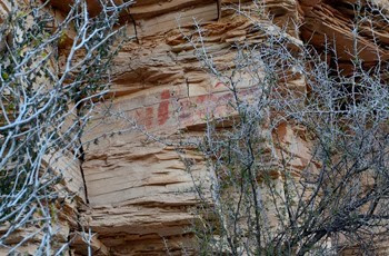 rock art at the hot springs