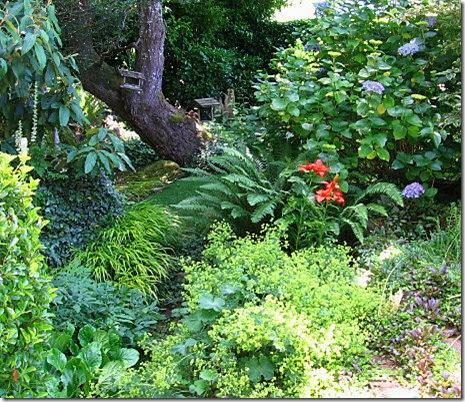 garden-slope