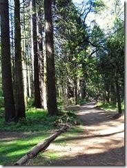 Sierra Visata Drive 120