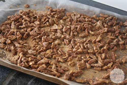 Sugared Pecan Recipe by Poofy Cheeks