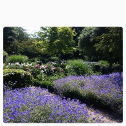 Pionträdgården