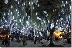 Ayala Triangle Park Christmas Show