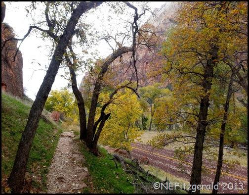 012AutumnZion GrottoTrail