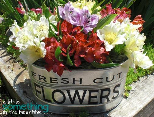 Flowers 1 WM
