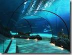Rotterdam aquarium