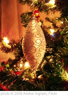 'Christmas tree ornament' photo (c) 2008, Amber Ingram - license: http://creativecommons.org/licenses/by-nd/2.0/