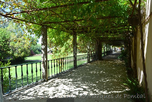gloriaishizaka.blogspot.pt - Palácio do Marquês de Pombal - Oeiras - 63