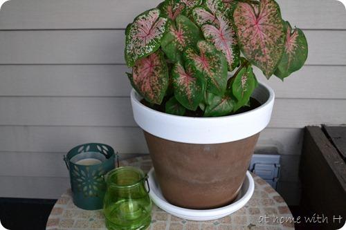patioplants_planter_step3_athomewithh