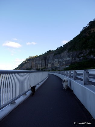 Bob and Munson on the Sea Cliff Bridge