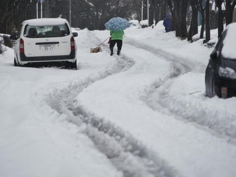 Mulher anda pela neve com seu cachorro em Tóquio, no Japão