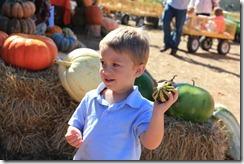 Pumpkin Patch Oct. 2011 013