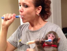 yasmin e o macaco escovam os dentes