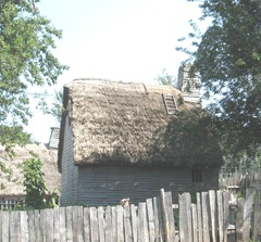 Plimoth Plant rethatching roof of house