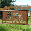 Alaska Wildlife Conservation Center.JPG
