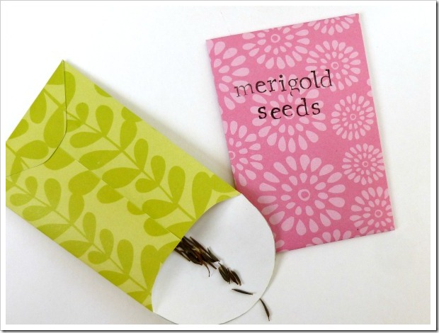 seed packets 2