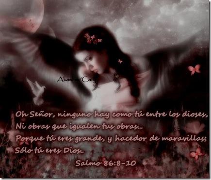 salm86-ETL-0602