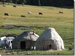 草原の中のユルタ