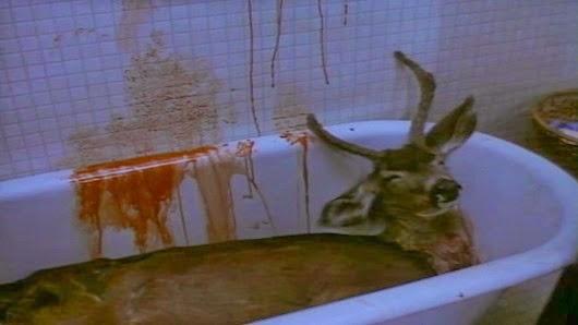 Ahora ya sabes lo que te espera. Atentamente, el cazador que mató a tus padres.
