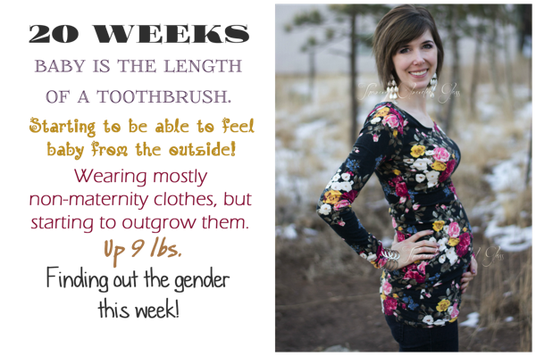 20 Weeks Pregnant (Baby #3) | Through Clouded Glass