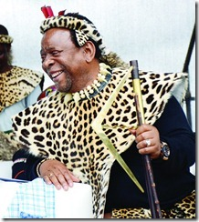 goodwillzwelithini