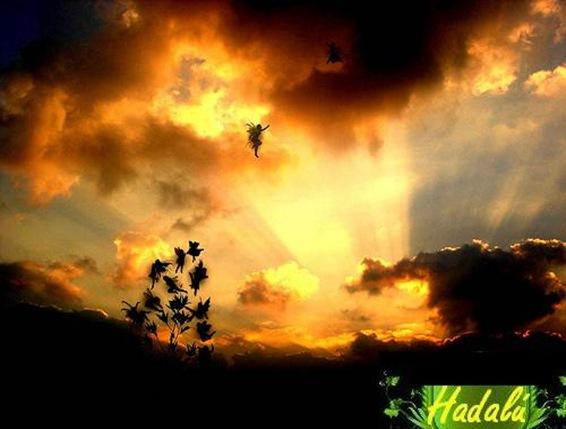FondoMagico-HADALU-0703