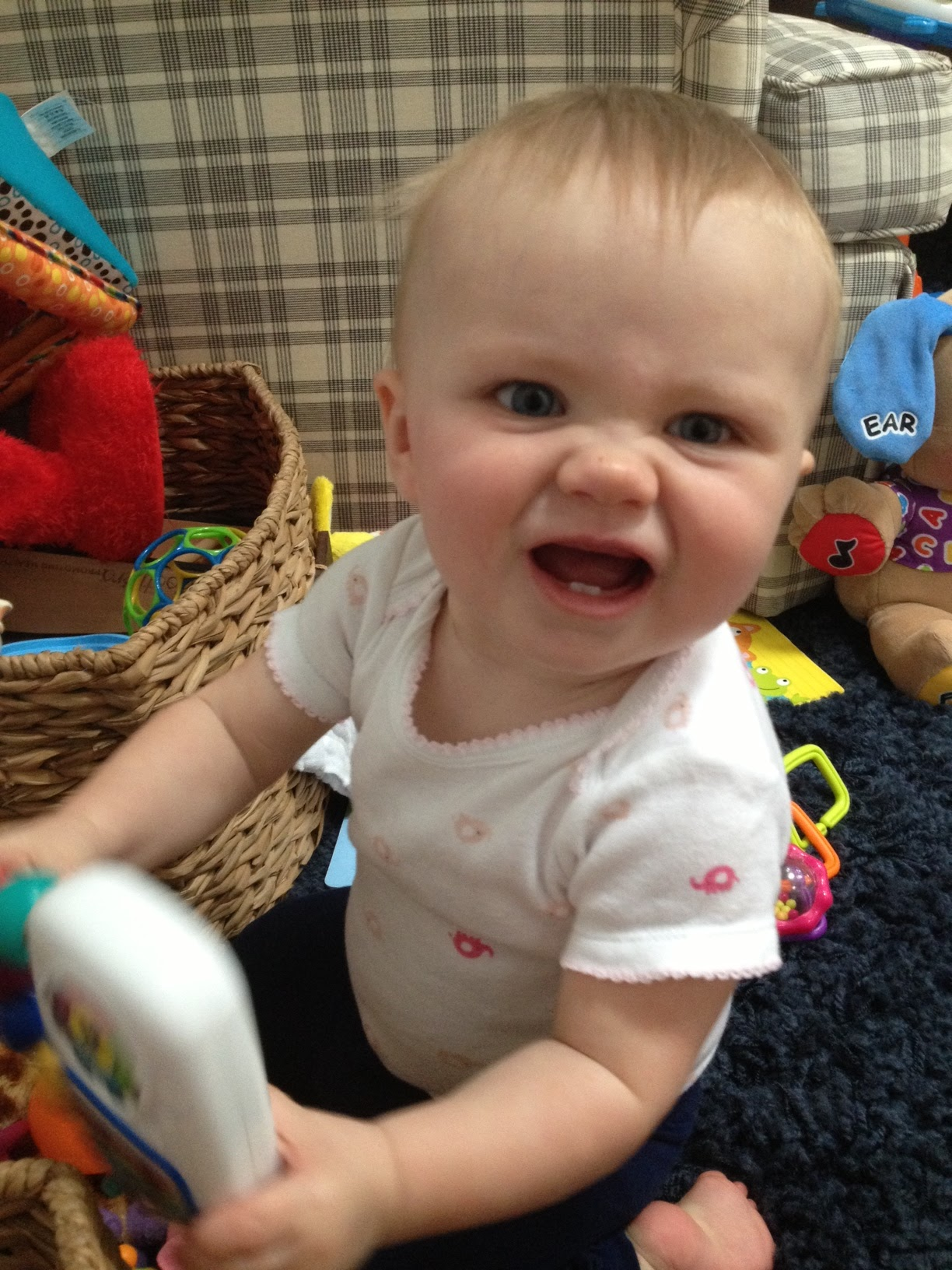 Funny Baby Faces With Funny Captions Chloe funny face 2 jpgFunny Baby Faces With Captions