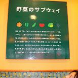 subway yuka in Narita, Tokyo, Japan