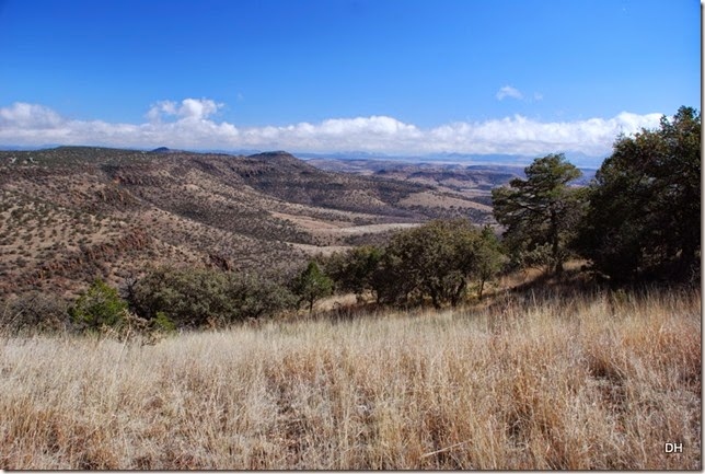 02-17-15 McDonald Observatory Fort Davis (135)