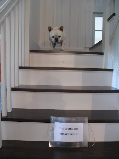 Well, that was a bad idea!  I didn't see that sign on my way up the stairs!